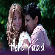Teri Yaad Lyrics- Fever